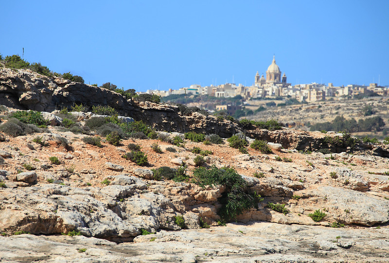 Gozo in the background