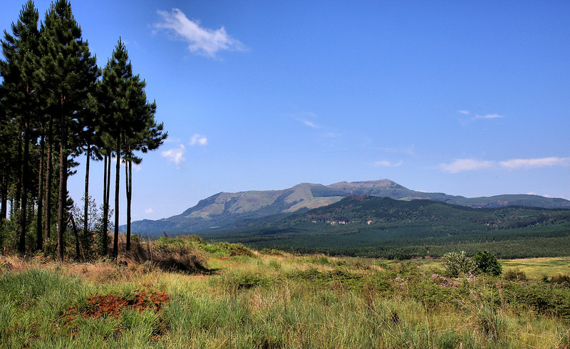 the Graskop trail