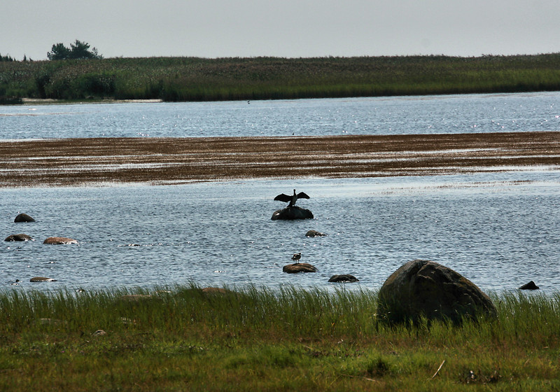 A place near the Estonian Coast, between Parnu and Haapsalu, that may or may not have had a name