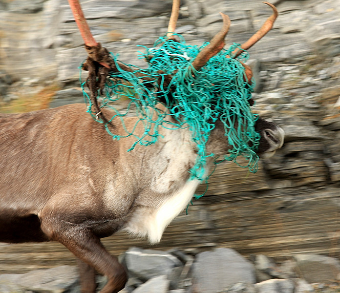 Right, we're having a stag party and you've got to wear a silly hat!
