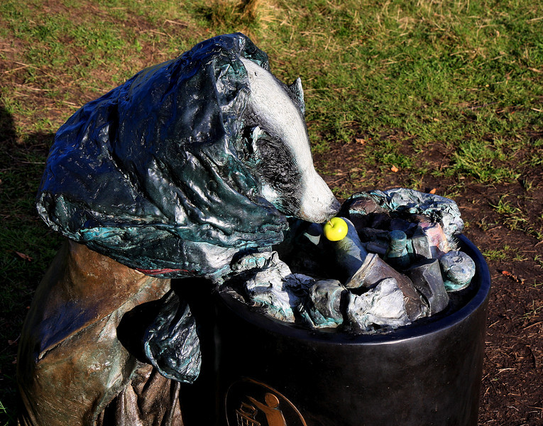 Mrs Badger has found an apple in the bin