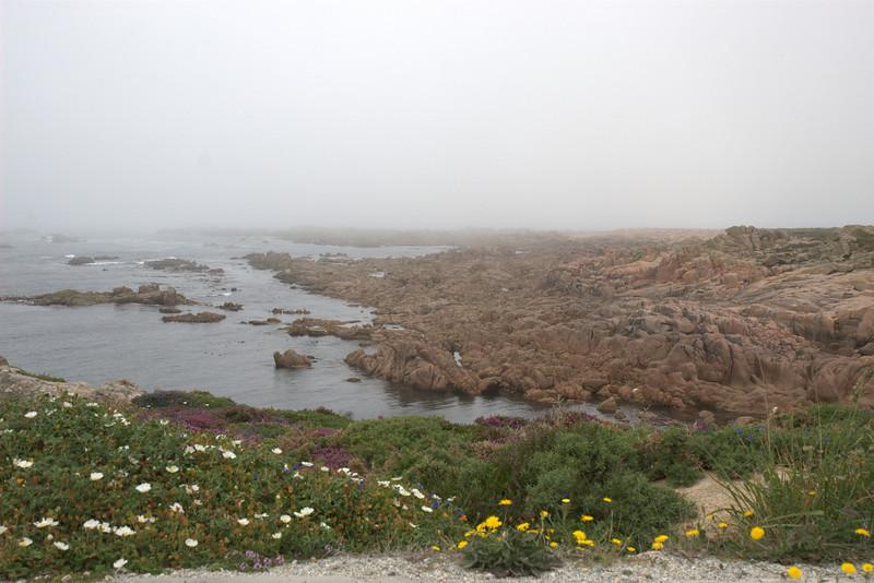 The Coast of Death