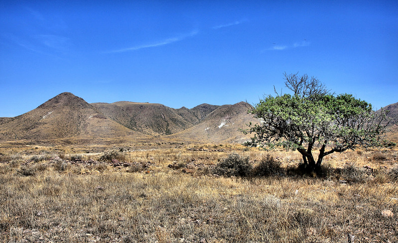 Nevada (Sierra Nevada foothills)