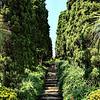 Blanes botanical gardens