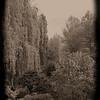 D6. Monet's garden, Giverny, France
