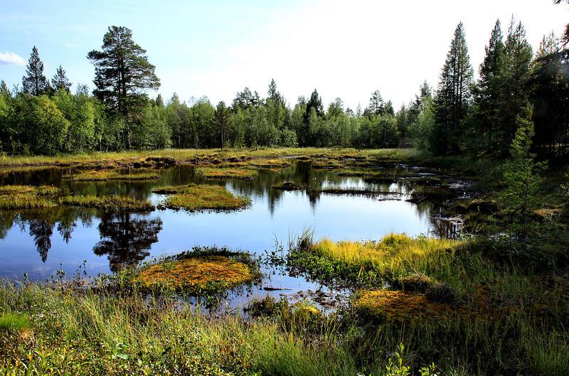 D116. Finland