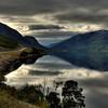D121. Norwegian fjord
