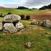 D151. Molsbjerge stone circle, Denmark