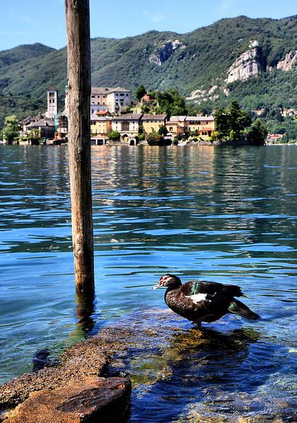 D72. Lake Orta, Italy