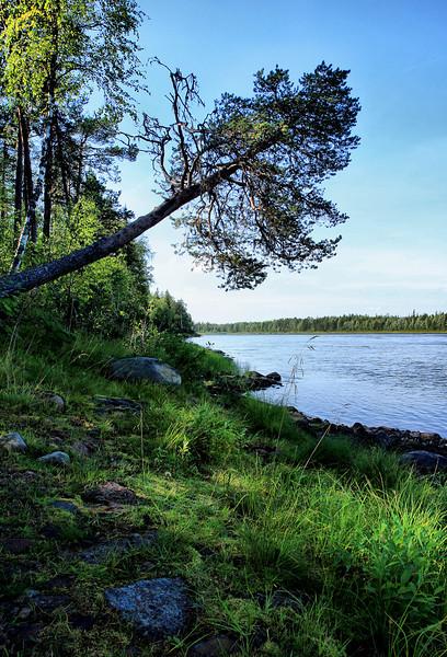 D116. Finnish/Swedish border (the river)