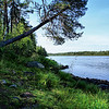 D116. Finnish/Swedish border (the river)