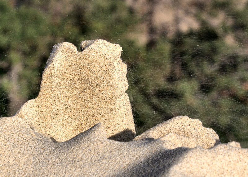 D22. Dunes De Pyla, Arcachon, France