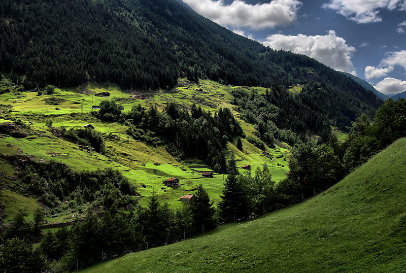 D73. The Alps, Switzerland
