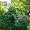 189_National_Garden_16_hectares_derriere_le_Palais_Vouli