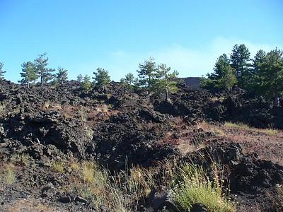 0195_Sicily_Etna_Volcano_Lava