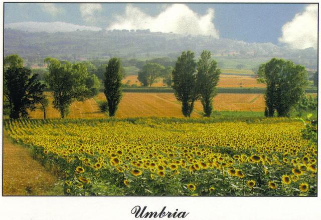 0506_Umbria_Countryside