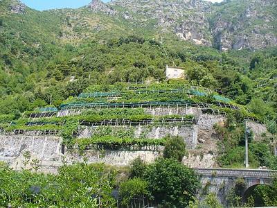 0354_Amalfi_Coast