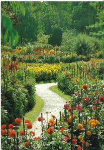 009_LM_Verbania_Villa_Taranto_Gardens_Viale_delle_Dalie