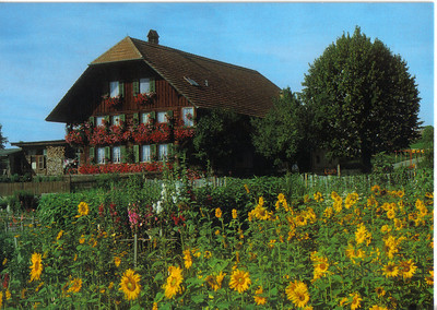 010_Typical_House_in_the_Bernese_Oberland