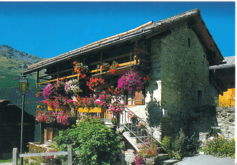 011_Typical_House_with_Flowers