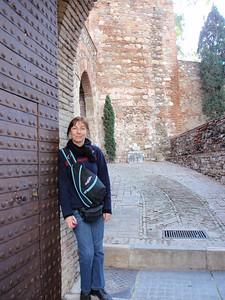 010_Malaga  Alcazaba of Marbella Fortress  The Entrance  Luce