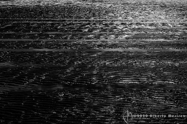 high tide #1