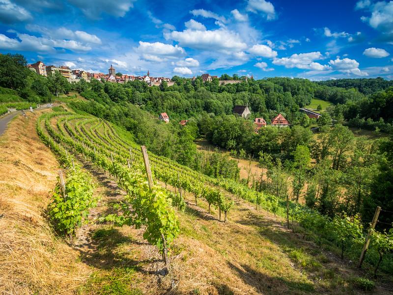 Rothenburg Vineyards, Germany