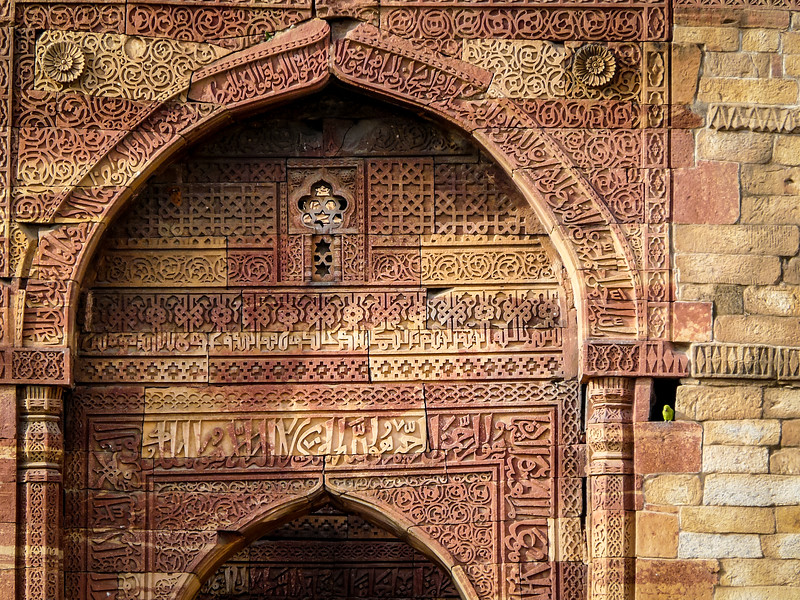 Fancy Doorway and Parrot, Qutb Minar, Delhi