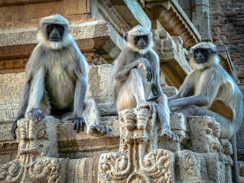 Three Wisemen, Hampi, India