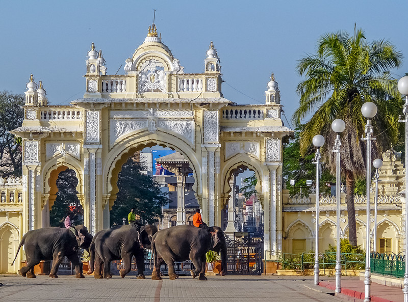 Elephants at the Gates, Mysore Palace, India