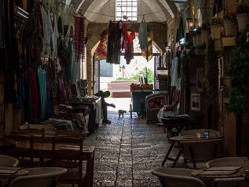 Man and Cat in the Turkish Bazaar, Akko, Israel