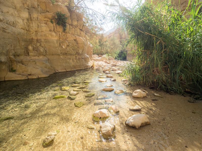 Stones in the Water, Ein Gedi, Israel