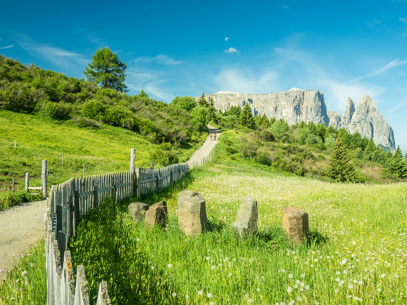 The Path to the Schlern, South Tyrol, Italy
