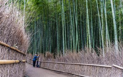 Kyoto_210319_DSC1719