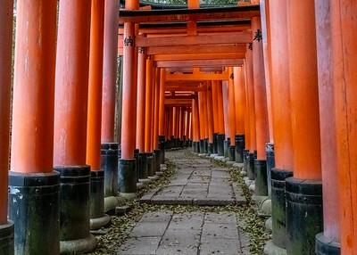 Kyoto_220319_DSC2525_1