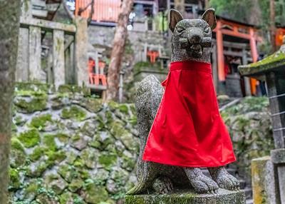 Kyoto_220319_DSC2468