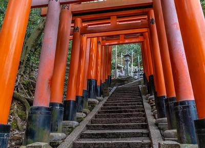 Kyoto_220319_DSC2550_1