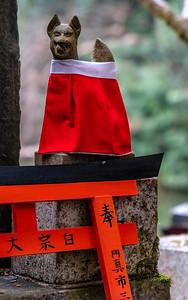 Kyoto_220319_DSB0989