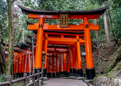 Kyoto_220319_DSC2420_1