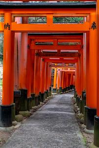 Kyoto_220319_DSC2573_1
