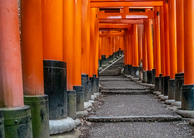 Kyoto_220319_DSC2508_1