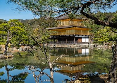 Kyoto_Rokuon-ji Golden Temple_200319_DSB0115