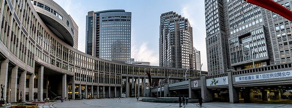 082_Tokyo_270319_DSB6065-Pano-1