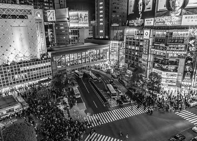 001_Tokyo_250319_DSB3313