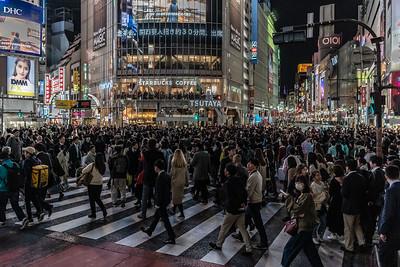 018_Tokyo_250319_DSC4717