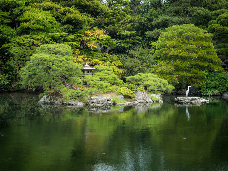 On the Pond of the Imperial Gardens, Kyoto, Japan