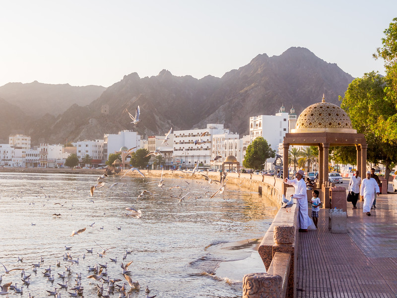 Feed the Birds, Muttrah Waterfront, Muscat, Oman