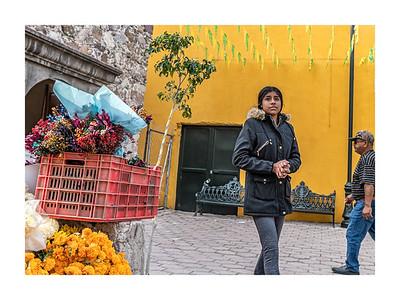 San Miguel Allende_011119_DSC0327