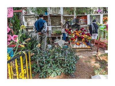 San Miguel Allende_011119_DSC0475