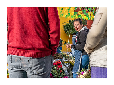 San Miguel Allende_011119_DSC0319
